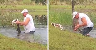 74 Y.O. Florida Man Wrestles Alligator To Save His 3 M.O. Puppy | Bored  Panda
